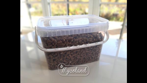 aukudega nõu põhupelletiga seente kasvatamiseks kodus